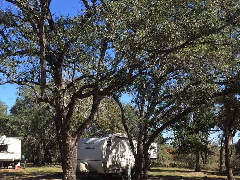 RV Parked Uner Trees At Our RV Park In San Antonio